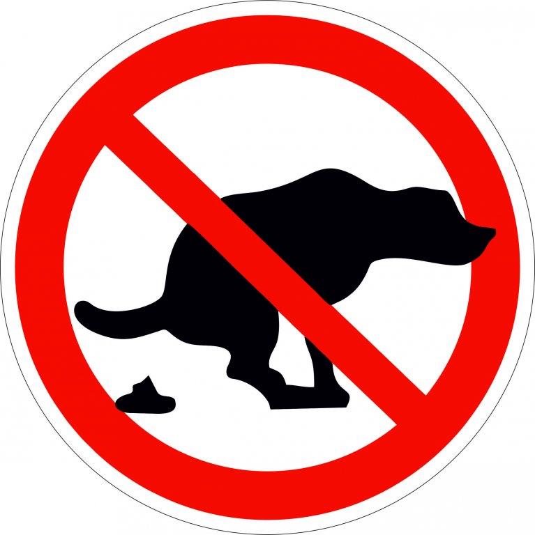 Надпись с собаками вход запрещен картинки, анимации парню любовью